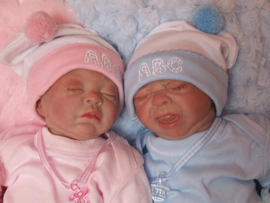 Full Body Silicone Reborn Baby Twins